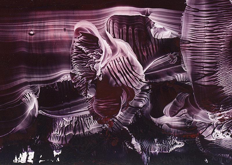 """2012 Archival Ink Jet Print 25x34"""""""