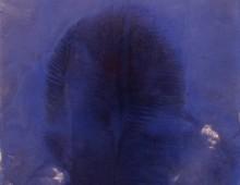 Teotl Azul 3