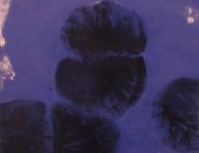 Teotl Azul 4