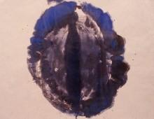 Teotl Azul 7